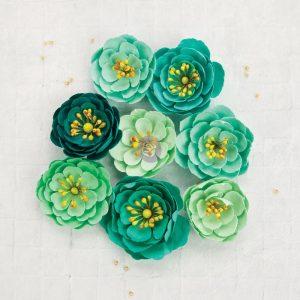 TBD   Prima Flowers - Grasslan