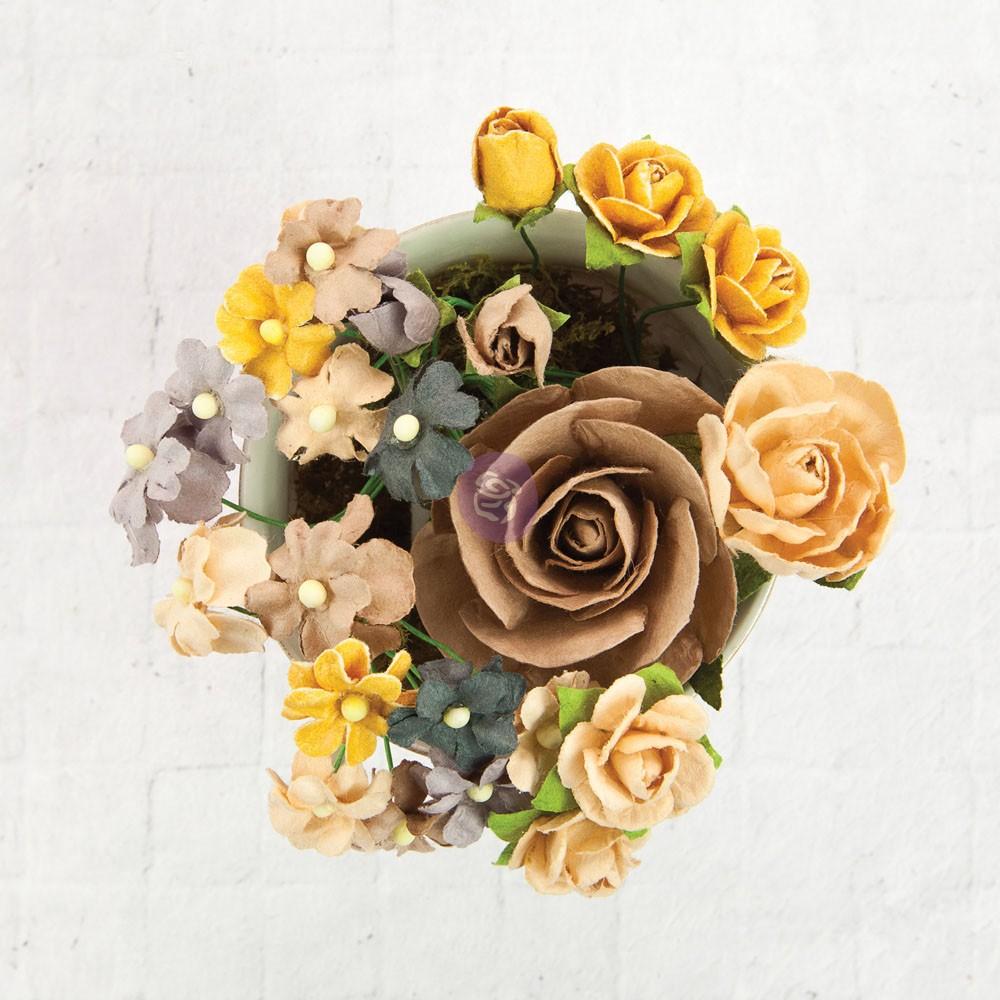 TBD   Prima Flowers - Hollybro