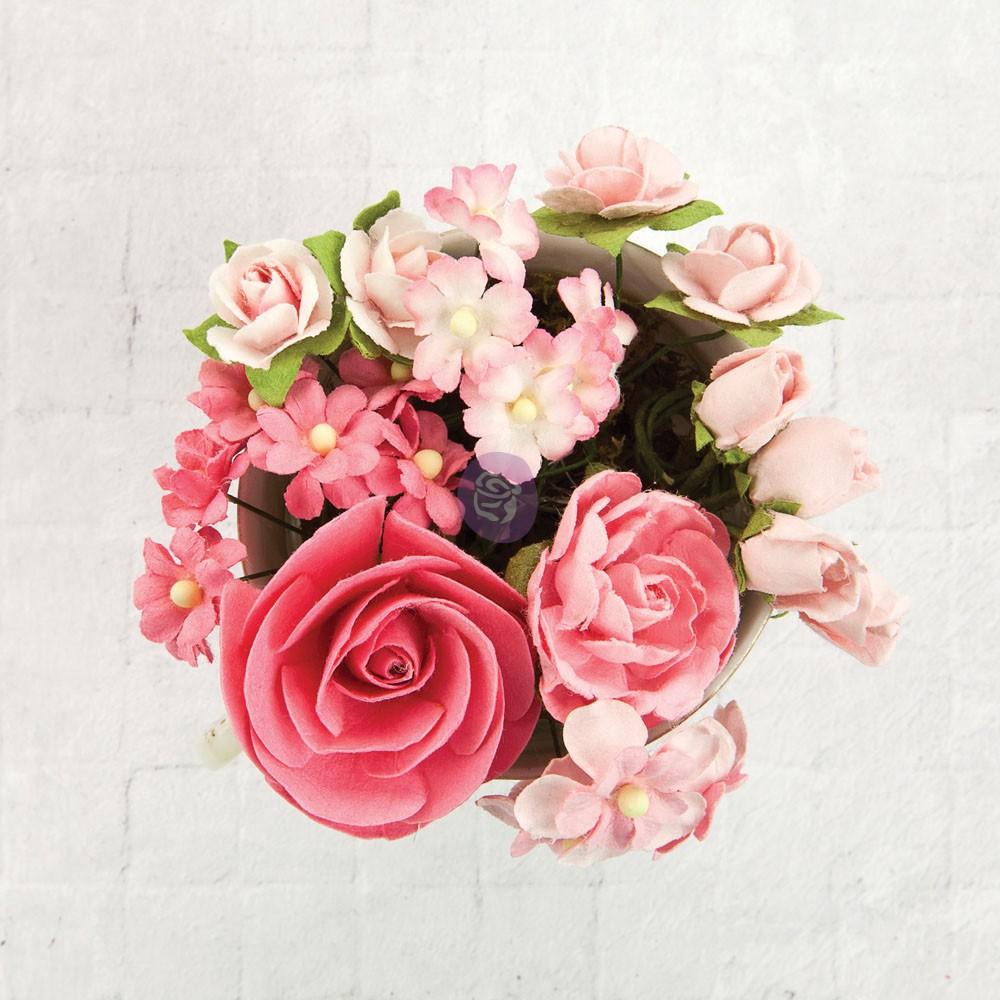 TBD   Prima Flowers - Charlsto