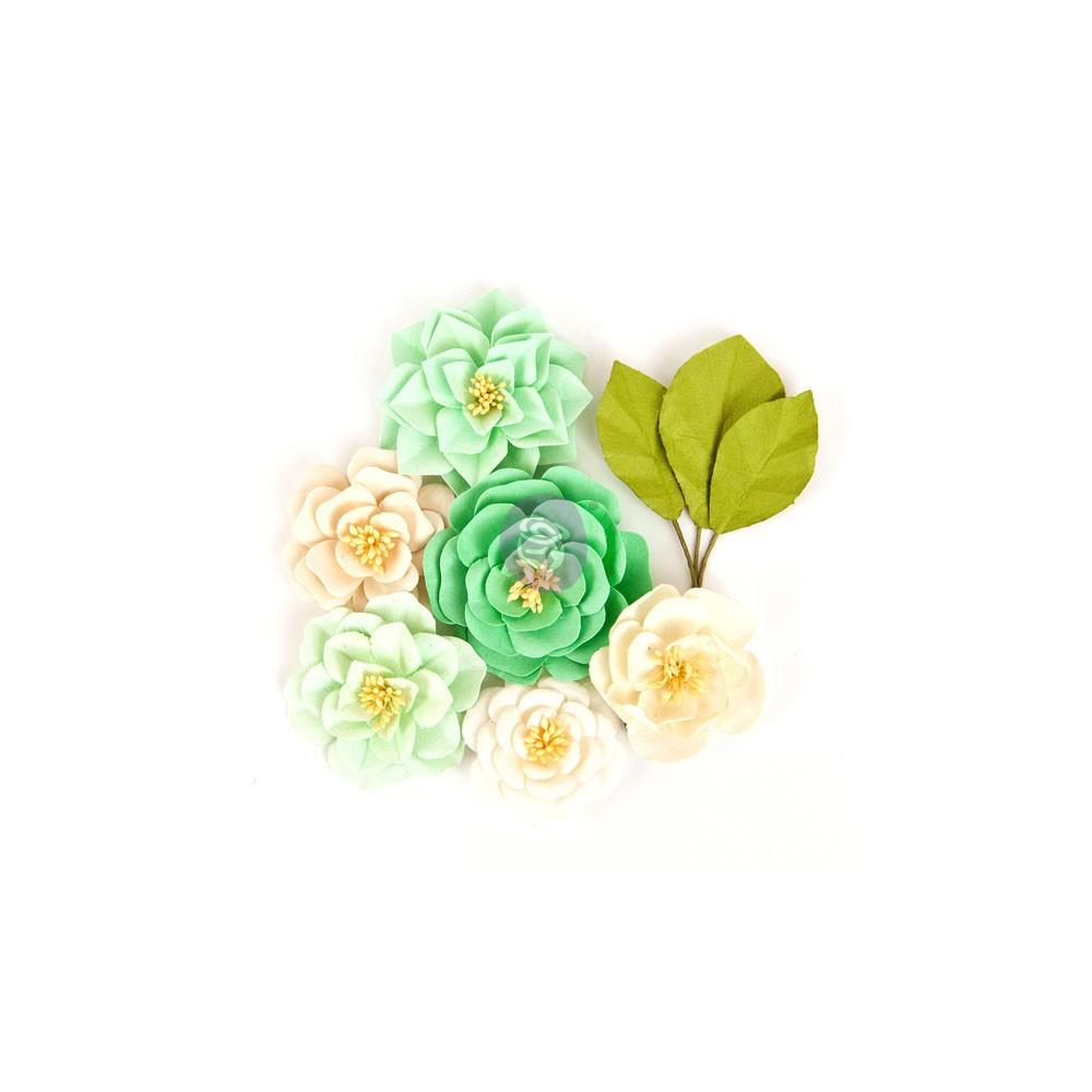 Prima Flowers - Lachland