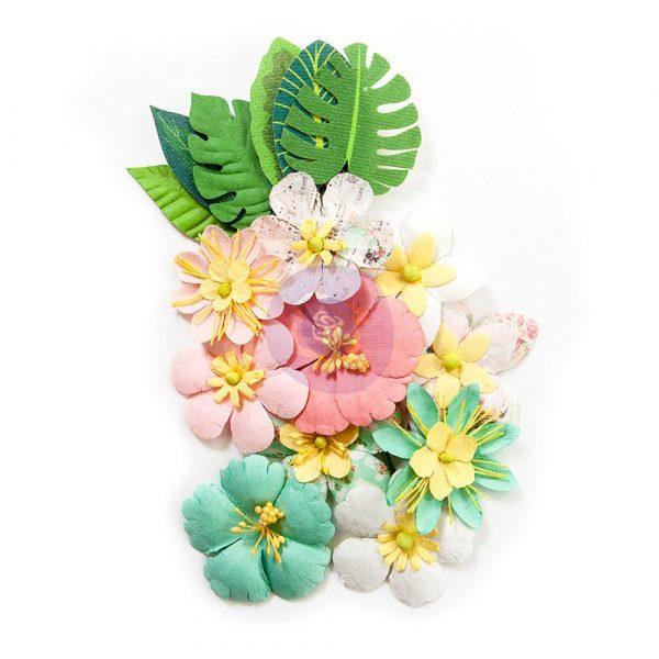 Havana Flowers - Verita