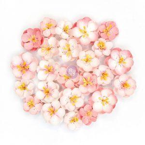 Cherry Blossom Flowers - Serene