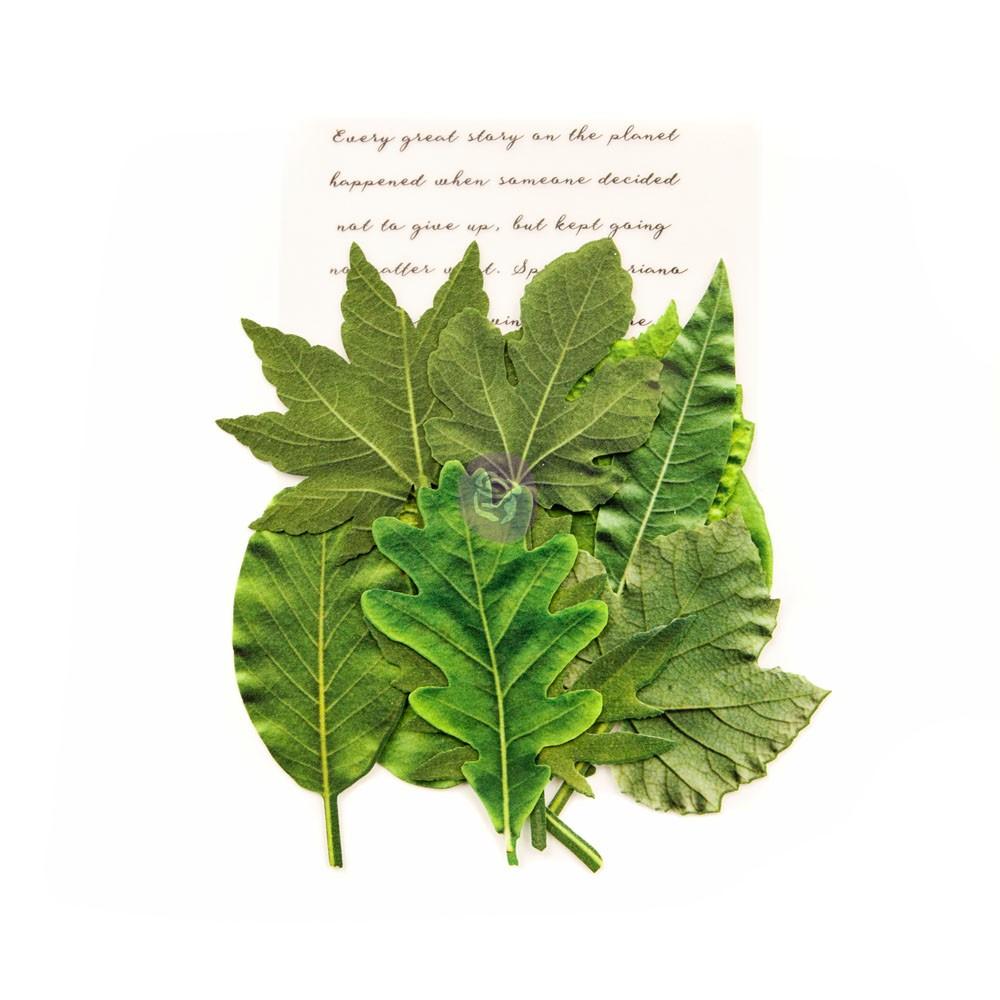 Leaf Embellishments - Rainer Leaves