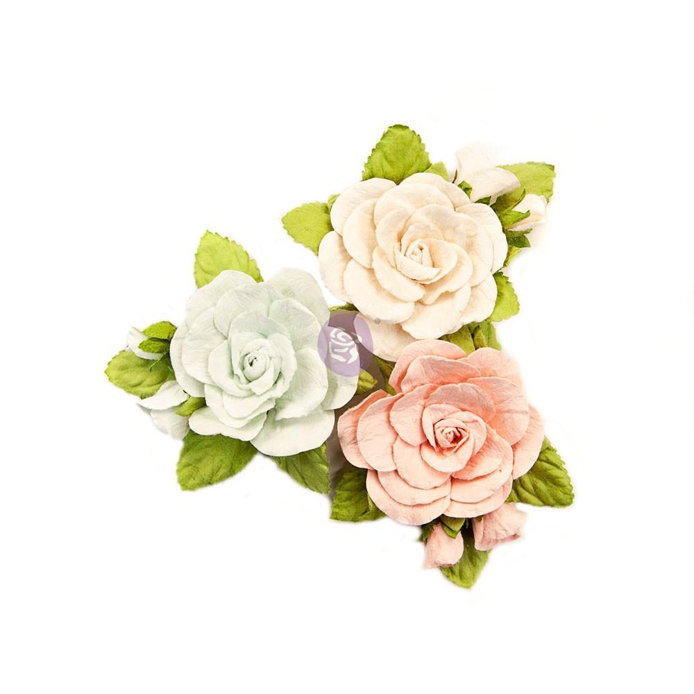 Poetic Rose Flowers - Sweet Roses