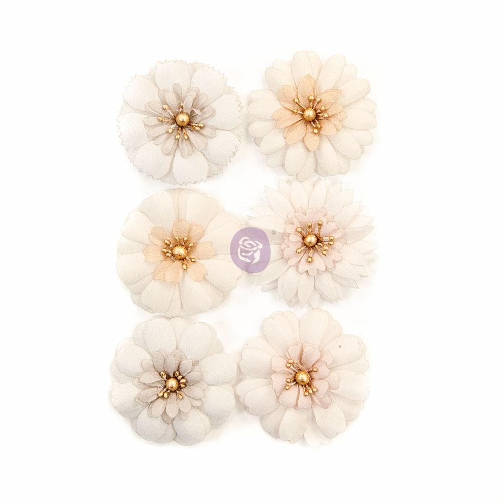 Pretty Pale Flowers - Pale Petals