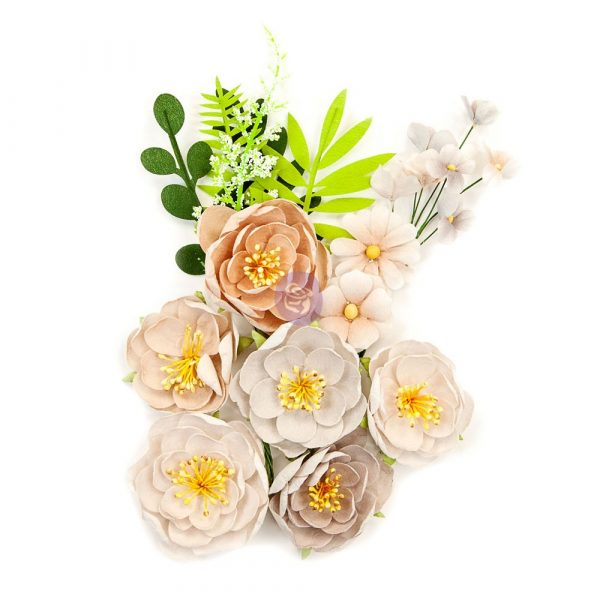 Pretty Pale Flowers - Arid Land