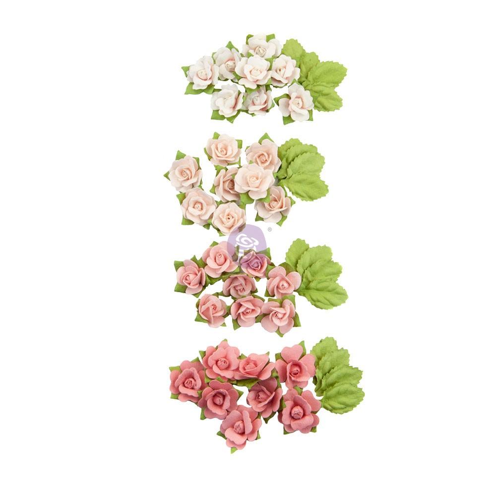 Fruit Paradise Flowers - Raspberry Kisses