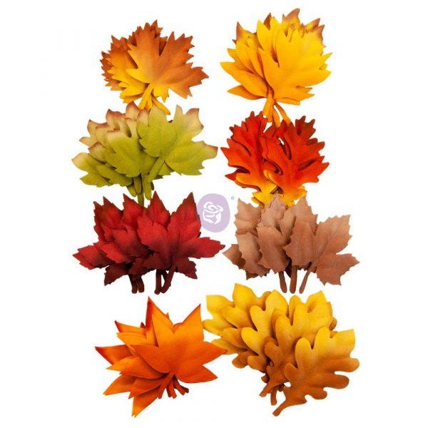 Autumn Sunset Flowers - Autumn Leaves