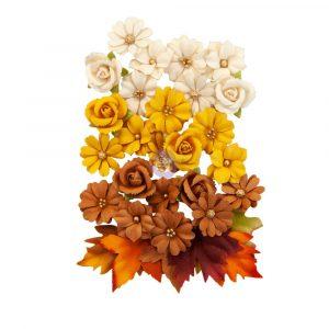 Autumn Sunset Flowers - Corn Mazes
